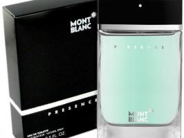 Essência Perfumaria Masculina Nº47 Presence